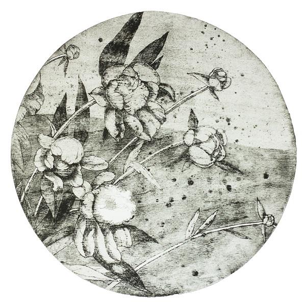 Оксана Стратійчук представила серію творів в японській техніці друку